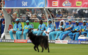 The Mumbai Indians watch the dog hold up playChennai Super Kings v Mumbai Indians, IPL, 1st game, Cape Town, April 18, 2009