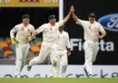 Ben Hilfenhaus celebrates the wicket of Chris Gayle , Australia v West Indies, 1st Test, Brisbane, 3rd day, November 28, 2009