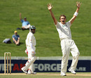 Tim Southee appeals for a wicket, New Zealand v Bangladesh, only Test, Hamilton, 5th day, February 19, 2010