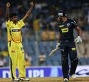 R Ashwin celebrates dismissing Andrew Symonds