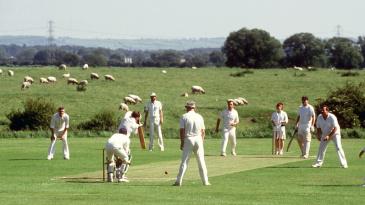 Village cricket played at Car Colston