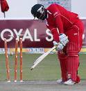 Prosper Utseya is yorked by Vinay Kumar, Zimbabwe v India, 1st Twenty20, Harare, June 12, 2010