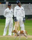 A dog interrupts play as Rahul Dravid and MS Dhoni look on, Sri Lanka Board President's XI v Indians, 3rd day, Colombo, July 15, 2010