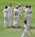 Andre Nel is congratulated by his Surrey team-mates after removing Stephen Peters, Surrey v Northamptonshire, County Championship Division Two, The Oval, July 21, 2010