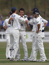 Bryce McGain is congratulated by his Essex team-mates after collecting four wickets