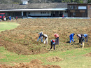 The Mutare Sports Club undergoes renovation, Mutare, October 11, 2010