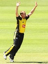 Ryan Duffield appeals for a wicket, New South Wales v Western Australia, Ryobi Cup, Hurstville Oval, Sydney, October 17, 2010