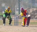 Srinivas Satyanarayana sweeps while Trevor Langa looks on, Germany v Vanuatu, WCL Division 8 Semi-Final, Kuwait City, November 11 2010