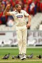 Chris Swan celebrates a wicket, Victoria v Queensland, Sheffield Shield, Melbourne, 1st day, November 27, 2010