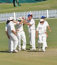 Namibia celebrate another wicket
