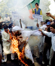 Protesters in Kolkata burn an effigy of Mike Denness, South Africa v India, 2nd Test, Port Elizabeth, November 21 2001
