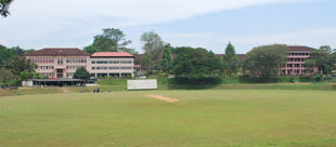 Peradeniya Campus Ground