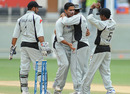 Saqib Ali picked up three wickets including the big wicket of Craig Williams, Final, UAE v Namibia, Dubai, April 15, 2011
