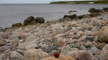 A cricket ball at Green Point at Gros Morne National Park in Newfoundland