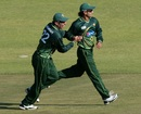 Misbah-ul-Haq and Mohammad Hafeez celebrate a wicket, Zimbabwe v Pakistan, 2nd Twenty20, Harare, September 18, 2011