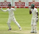 Reece Young celebrates the wicket of Vusi Sibanda, Zimbabwe v New Zealand, only Test, Bulawayo, 3rd day, November 3, 2011