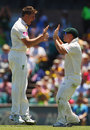 James Pattinson and David Warner celebrate