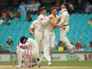 James Pattinson had Virat Kohli lbw