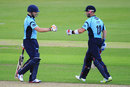 Luke Wright and Matt Prior put on 114 in less than ten overs, Hampshire v Sussex, FLt20 South Group, West End