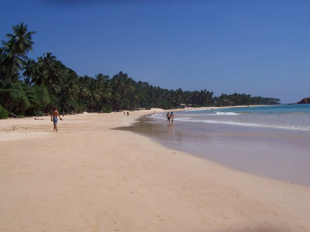 Spend lazy days on the beach in Mirissa