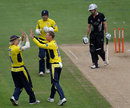 Danny Briggs celebrates bowling James Hildreth, Hampshire v Somerset, Friends Life t20 semi-final, Cardiff, August 25, 2012
