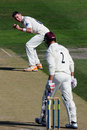 Steve Magoffin celebrates removing Marcus Trescothick