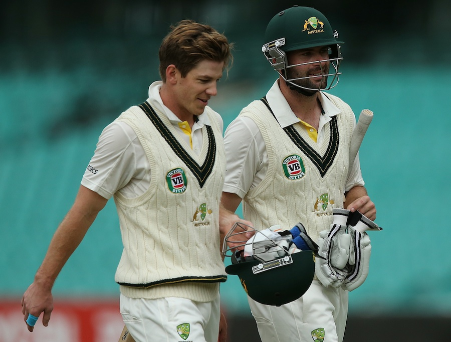 Alex Doolan and Tim Paine walk off after a 162-run stand