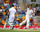 James Pattinson celebrates the dismissal of AB de Villiers