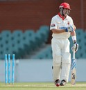 Daniel Christian after his dismissal, South Australia v Queensland, Sheffield Shield, day one, Adelaide Oval, October 23, 2012