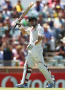 Ed Cowan scored a half-century before falling prey to the pull shot