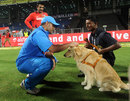 MS Dhoni makes friends with one of the security dogs, India v England, 1st T20, Pune, December 20, 2012