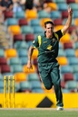 Mitchell Johnson celebrates a wicket