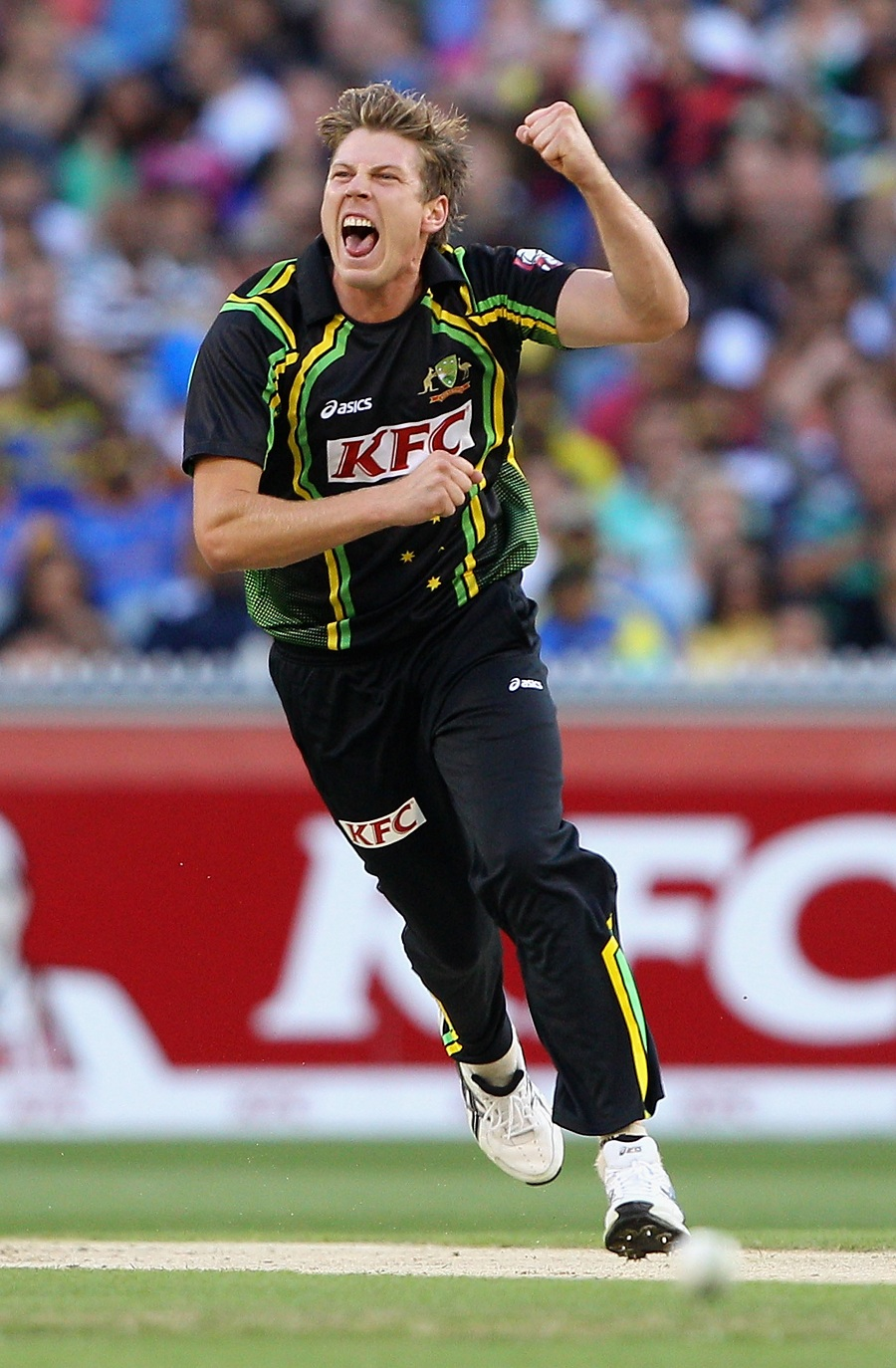 James Faulkner celebrates his first international wicket