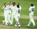 Evan Gulbis and his Tasmania team-mates celebrate a strike