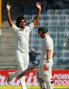 Ishant Sharma celebrates David Warner's wicket