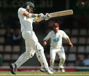 Luke Butterworth pulls to the leg side, Tasmania v Queensland, Sheffield Shield final, 2nd day, Hobart, March 23, 2013