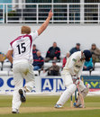 David Willey had Rob Quiney caught behind, Northamptonshire v Essex, County Championship, Division Two, Northampton, 3rd day, April 19, 2013