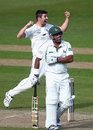 Mark Wood celebrates removing Samit Patel, Yorkshire v Derbyshire, County Championship, Division One, Headingley, 3rd day, May 1, 2013