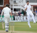 James Anderson is pumped after picking up the wicket of Peter Fulton