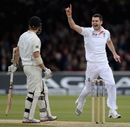 James Anderson picked up the key wicket of Kane Williamson
