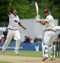 Chris Jordan had Peter Trego caught down the leg side