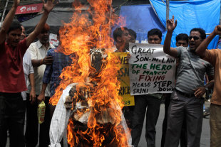 Protestors burn an effigy of N Srinivasan, Kolkata, May 26, 2013