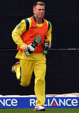 David Warner performs his 12th man duties, Australia v New Zealand, Champions Trophy, Group A, Edgbaston, June 12, 2013