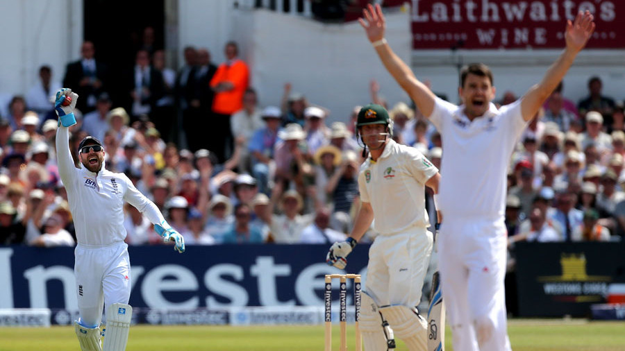 James Anderson and Matt Prior appeal to have Brad Haddin caught behind