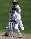 Mark Atkinson, Tasmania wicketkeeper