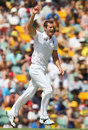 Chris Tremlett picked up his second wicket, Australia v England, 1st Test, Brisbane, 3rd day, November 23, 2013