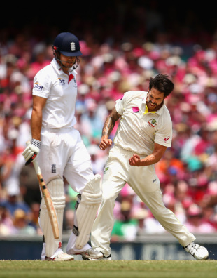 Mitchell Johnson was the spearhead of an attack that remained unchanged through the series