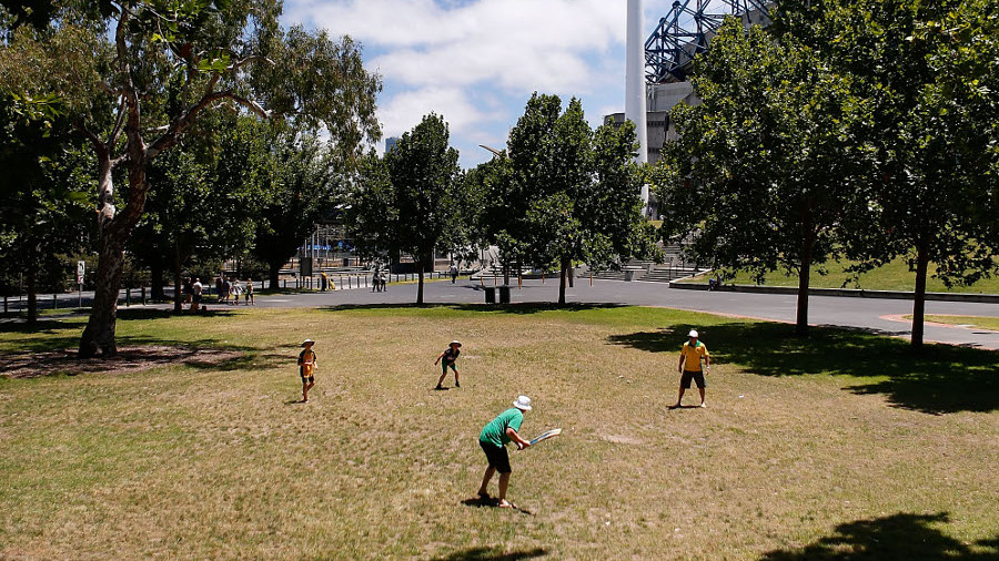 Fans play cricket in Yarra Park outside the MCG