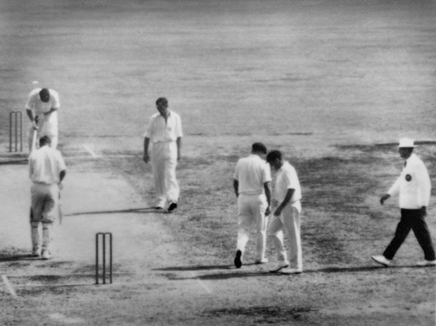 Death knell: A dejected Meckiff stares at the pitch after being no-balled at the Gabba