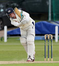 Will Tavaré clips to leg, Leicestershire v Gloucestershire, County Championship, Division Two, Grace Road, 2nd day, June 3, 2014